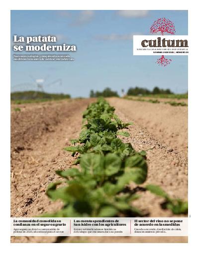 Cultum 29