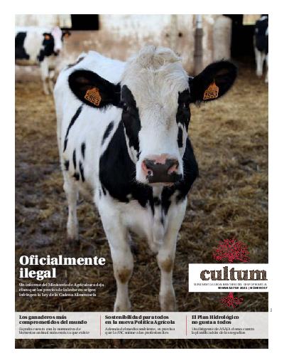 Cultum 37