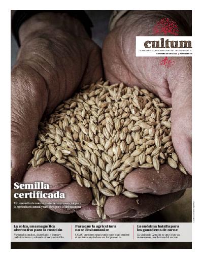 Cultum 38