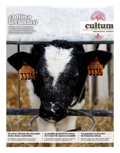 Cultum 35